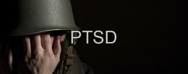 ptsd vietnam veterans essay Web site of the vietnam veterans' association of australia,  gary often said that too much had been written on posttraumatic stress disorder (ptsd).