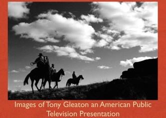 tony-gleaton-horses