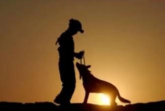 Veteran Service Dogs