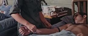 VVAVet Medical Advances